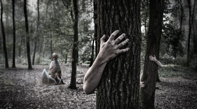 Ночь лесных ужастиков